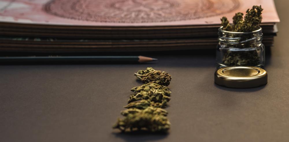 Book and cannabis photo