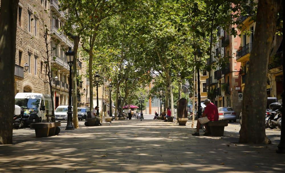 photo of Passeig del Born