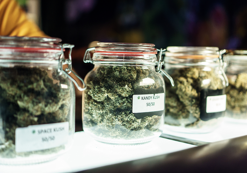 Cannabis Kandy Kush photo