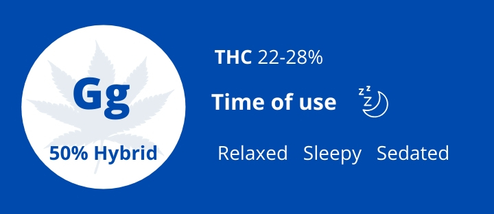 Best hybrid types of weed Gorilla Glue THC 22-28% photo