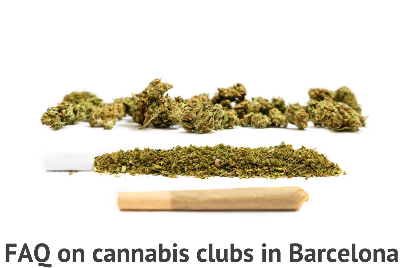 FAQ on cannabis clubs
