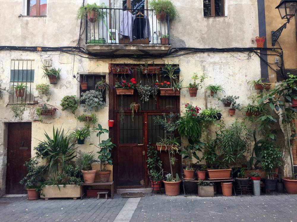 Цветы на улицах Старого города